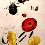 【だまし絵】 いったい何が見えてくる!? 昆虫が描かれた超高難度のだまし絵に驚きの声! ただし、ツイッター上では別の声も……。